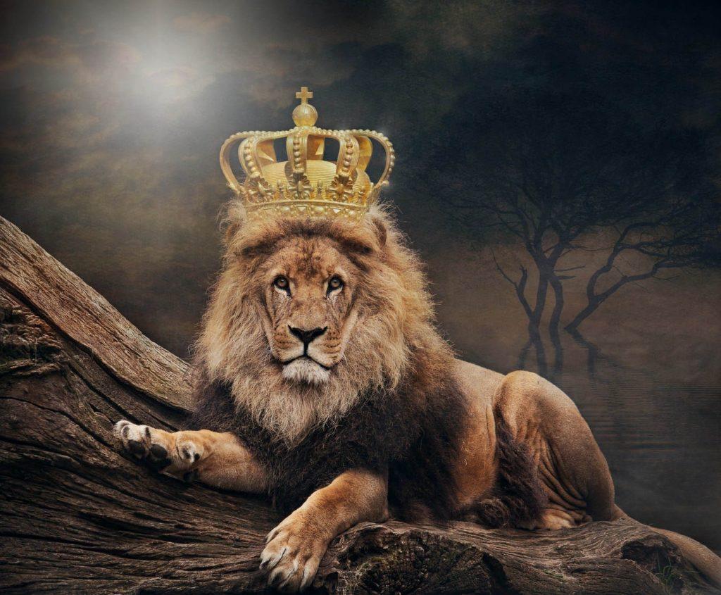 klant is koning